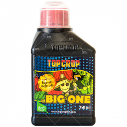 TOP CROP BIG ONE BIOESTIMULANTE 250ML