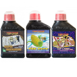 Combo Top Crop automáticas Underground Auto Candy 250ml