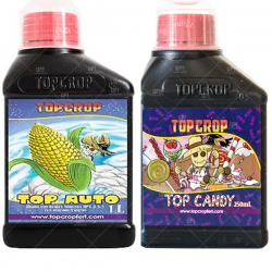 Combo Top Crop Automaticas Auto Candy 250ml