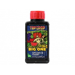 TOP CROP BIG ONE BIOESTIMULANTE 100 ML