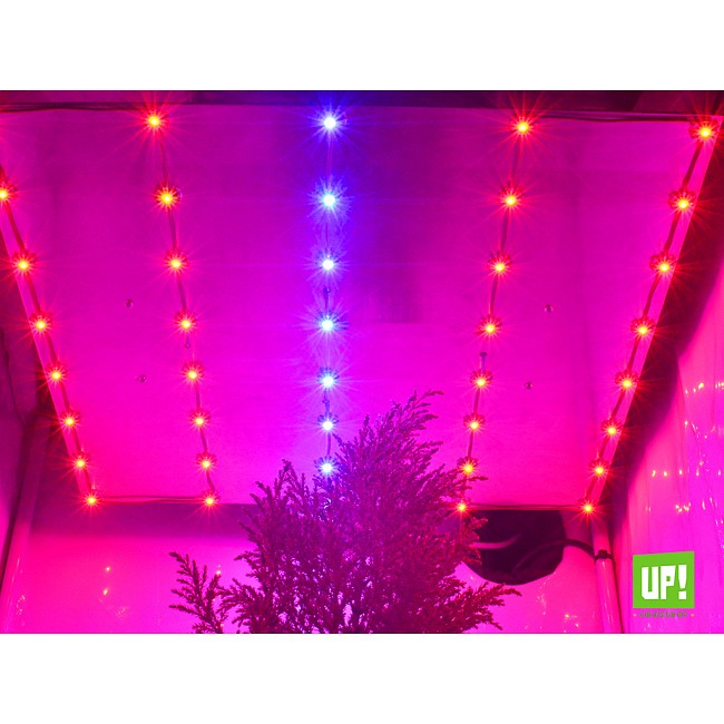 Up growshop argentina panel led goliath 120w cultivo indoor - Pantalla led cultivo interior ...